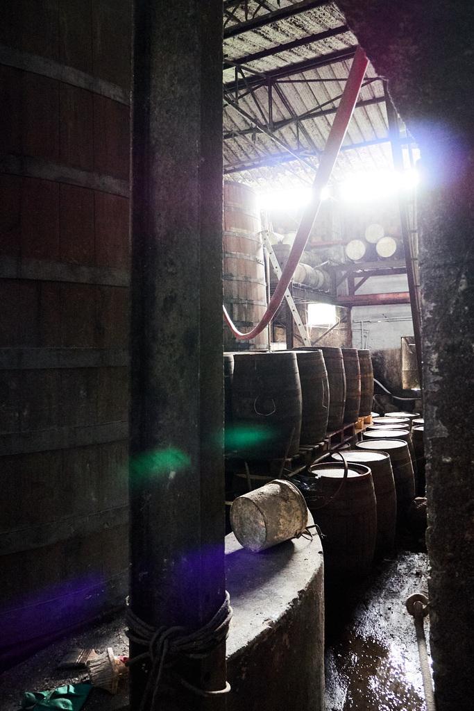 La Favorite – Cellar 2